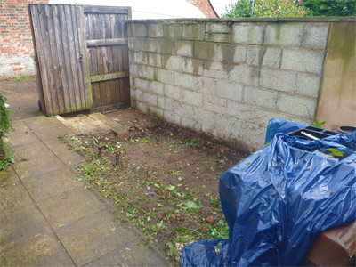 Shed and garden after - cheaper than skip hire in Devon